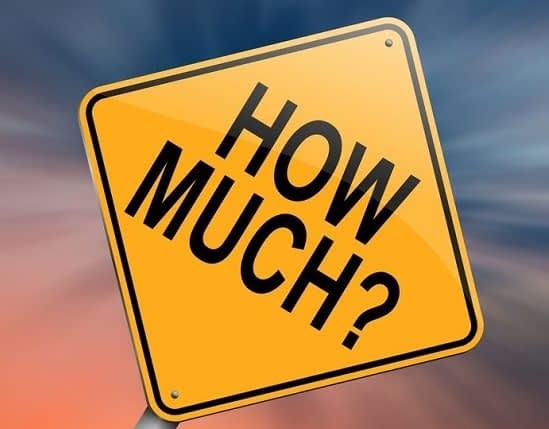 how much does custom software cost